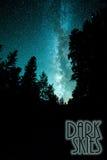Γαλακτώδης γαλαξίας τρόπων πέρα από τα δέντρα στοκ εικόνα με δικαίωμα ελεύθερης χρήσης