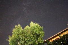 Γαλακτώδης ουρά τρόπων Στοκ Φωτογραφία
