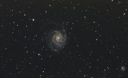 Γαλαξίας Pinwheel στοκ φωτογραφίες