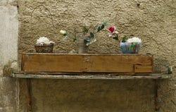 Γαλλικά λουλούδια Shel fWith Στοκ Εικόνα