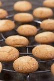 γαλλικά macaroons παραδοσιακά στοκ εικόνα