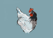 γαλλική κότα στοκ εικόνες με δικαίωμα ελεύθερης χρήσης