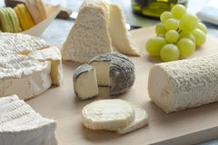 Γαλλική πιατέλα τυριών Στοκ Φωτογραφία