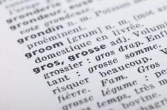 Γαλλικό λεξικό στο λίπος λέξης Στοκ Φωτογραφίες