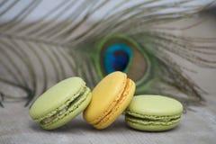 Γαλλικό επιδόρπιο macarons που διακοσμείται με τα φτερά φασιανών Στοκ φωτογραφίες με δικαίωμα ελεύθερης χρήσης
