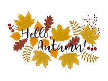 Γειά σου έννοια φθινοπώρου Υπόβαθρο φθινοπώρου με τα φύλλα του σφενδάμνου, της βαλανιδιάς, της σημύδας και άλλων δέντρων Στοκ Φωτογραφία