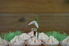 Γειά σου αναπηδήστε τη βανίλια cupcakes που ολοκληρώνεται με το φρέσκο λουλούδι snowdrop και ένα μικροσκοπικό ειδώλιο προσώπων με Στοκ Φωτογραφίες