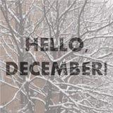 Γειά σου Δεκέμβριος μπλε snowflakes ανασκόπησης άσπρος χειμώνας Στοκ φωτογραφία με δικαίωμα ελεύθερης χρήσης