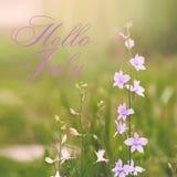 Γειά σου ευχετήρια κάρτα Ιουλίου με τα λουλούδια στο υπόβαθρο Στοκ εικόνες με δικαίωμα ελεύθερης χρήσης