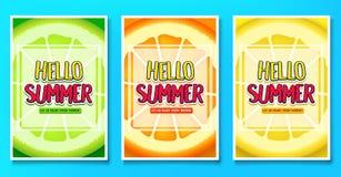 Γειά σου καλοκαίρι απολαύστε τις αφίσες κάθε χαιρετισμού στιγμής με το υπόβαθρο φρούτων ασβέστη, πορτοκαλιών και λεμονιών Στοκ Εικόνα