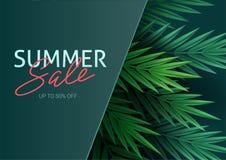 Γειά σου καλοκαίρι, καλοκαίρι Η αφίσα κειμένων στα πλαίσια των τροπικών εγκαταστάσεων Φύλλα φοινικών, φύλλο ζουγκλών και ελεύθερη απεικόνιση δικαιώματος