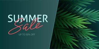 Γειά σου καλοκαίρι, καλοκαίρι Η αφίσα κειμένων στα πλαίσια των τροπικών εγκαταστάσεων Φύλλα φοινικών, φύλλο ζουγκλών και απεικόνιση αποθεμάτων