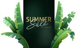Γειά σου καλοκαίρι, καλοκαίρι Η αφίσα κειμένων στα πλαίσια των τροπικών εγκαταστάσεων Η αφίσα για την πώληση και ένα σημάδι διαφή απεικόνιση αποθεμάτων