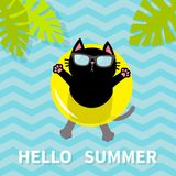 Γειά σου καλοκαίρι Μαύρη γάτα που επιπλέει στον κίτρινο κύκλο νερού λιμνών αέρα lifebuoy μπλε δέντρο σύστασης φωτογραφιών εγγράφο διανυσματική απεικόνιση