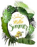 Γειά σου καλοκαίρι με το ωοειδές πλαίσιο και τις τροπικές εγκαταστάσεις στοκ εικόνα με δικαίωμα ελεύθερης χρήσης