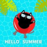 Γειά σου καλοκαίρι Νερό πισινών Μαύρη γάτα που επιπλέει στον κόκκινο κύκλο νερού επιπλεόντων σωμάτων λιμνών Τοπ άποψη αέρα Γυαλιά διανυσματική απεικόνιση