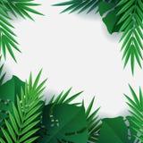 Γειά σου καλοκαίρι, καλοκαίρι Υπόβαθρο των τροπικών εγκαταστάσεων Φύλλα φοινικών, φύλλο ζουγκλών Η αφίσα για την πώληση και ένα σ ελεύθερη απεικόνιση δικαιώματος
