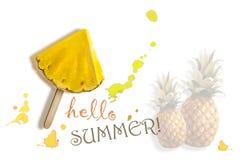 Γειά σου καλοκαίρι φρέσκος ανανάς Στοκ Εικόνες
