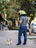 Γειά σου, μωρό! Παιχνίδι πατέρων και γιων με τη χαριτωμένη γάτα οδών στοκ εικόνες