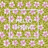 Γειά σου υπόβαθρο άνοιξη με τα λουλούδια να είστε μπορεί διαφορετική floral σύσταση σκοπών απεικόνισης χρησιμοποιούμενη Στοκ εικόνα με δικαίωμα ελεύθερης χρήσης