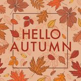 Γειά σου φθινόπωρο Πτώση συρμένων των χέρι φύλλων φθινοπώρου ελεύθερη απεικόνιση δικαιώματος