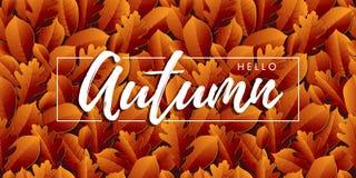 Γειά σου φθινόπωρο, φύλλα με την εγγραφή Άνευ ραφής ανασκόπηση στοκ φωτογραφία με δικαίωμα ελεύθερης χρήσης