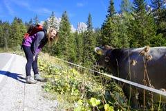 Γεια γλυκιά αγελάδα Στοκ φωτογραφία με δικαίωμα ελεύθερης χρήσης