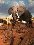 Γεμισμένα ζώα στο Τέξας Στοκ εικόνες με δικαίωμα ελεύθερης χρήσης