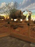 Γεμισμένα ζώα στο Τέξας στοκ φωτογραφία με δικαίωμα ελεύθερης χρήσης