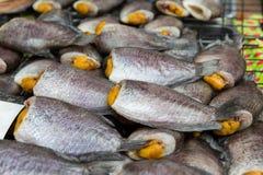 Γεμισμένα ψάρια ή θαλασσινά στην ασιατική αγορά οδών Στοκ Εικόνες