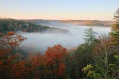 γεμισμένη κοιλάδα ομίχλη&sig Στοκ Εικόνες