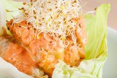 Γεμισμένοι ρόλοι λάχανων με τη σάλτσα ντοματών Στοκ εικόνα με δικαίωμα ελεύθερης χρήσης