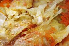 Γεμισμένο πιάτο coleslaw λάχανων Στοκ φωτογραφία με δικαίωμα ελεύθερης χρήσης