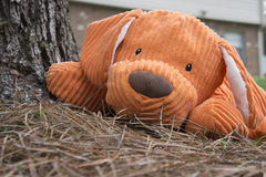 Γεμισμένο πορτοκάλι ζωικό παιχνίδι σκυλιών βελούδου Στοκ Εικόνες