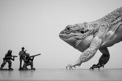 Γενειοφόρος δεινόσαυρος τεράτων δράκων στοκ εικόνες με δικαίωμα ελεύθερης χρήσης
