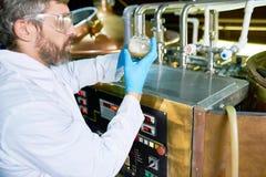 Γενειοφόρος ζυθοποιός που ελέγχει την ποιότητα μπύρας Στοκ Φωτογραφίες