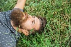 Γενειοφόρο άτομο που βάζει στην πράσινη χλόη Στοκ εικόνα με δικαίωμα ελεύθερης χρήσης