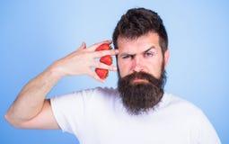 Γενειοφόρο χέρι λαβής hipster ατόμων με τις φράουλες κοντά στο πρόσωπο Το άτομο δεν μπορεί να σκεφτεί για το μπλε τίποτα αλλά φρα στοκ φωτογραφίες