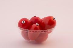 Γενετικά τροποποιημένα προϊόντα Στοκ φωτογραφίες με δικαίωμα ελεύθερης χρήσης