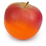 Γενετικά τροποποιημένα τρόφιμα Στοκ Εικόνες