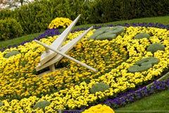 ΓΕΝΕΥΗ ΕΛΒΕΤΙΑ: νέο σχέδιο λουλουδιών ρολογιών Στοκ Εικόνες