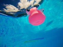 Γενικό λαστιχένιο παιχνίδι ψαριών στην πισίνα, υποβρύχια άποψη Στοκ φωτογραφία με δικαίωμα ελεύθερης χρήσης