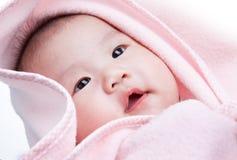 γενικό ροζ μωρών Στοκ Εικόνες
