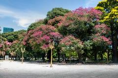Γενικό SAN Martin Plaza σε Retiro - το Μπουένος Άιρες, Αργεντινή Στοκ φωτογραφίες με δικαίωμα ελεύθερης χρήσης