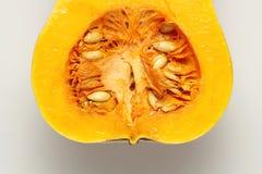 Γεννητικά όργανα κολοκύθας στοκ φωτογραφία