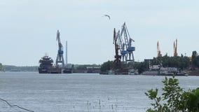 Γερανοί λιμένων Δούναβη απόθεμα βίντεο