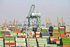 Γερανοί και εμπορευματοκιβώτια λιμενικών ναυπηγείων του Λος Άντζελες Στοκ Εικόνα