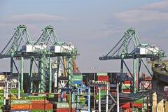 Γερανοί και εμπορευματοκιβώτια λιμενικών ναυπηγείων του Λος Άντζελες Στοκ Εικόνες