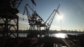 Γερανοί πύργων στο εργοτάξιο οικοδομής απόθεμα βίντεο