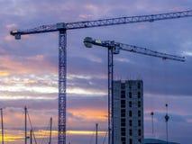 Γερανοί πύργων στο ηλιοβασίλεμα Στοκ Εικόνες
